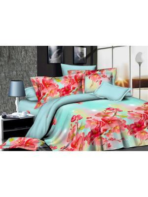 Комплект постельного белья  1,5 ДомВелл сатин СН09 Сакура. Цвет: красный