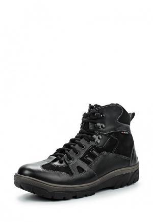 Ботинки трекинговые Зебра. Цвет: черный