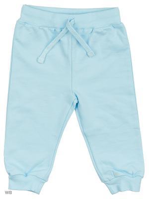Трикотажные брюки Modis. Цвет: серо-голубой