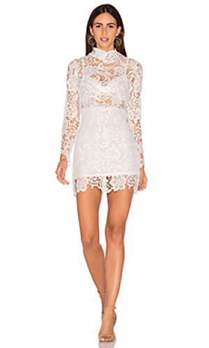 Кружевное платье falling for florence LIONESS. Цвет: белый