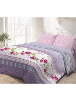 Комплект постельного белья 2,0-сп, ГАРМОНИЯ, поплин 70*70см, Розмарин Волшебная ночь. Цвет: сиреневый, белый, красный, розовый