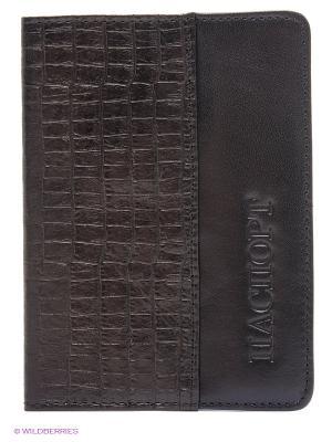 Обложка IVS. Цвет: темно-коричневый