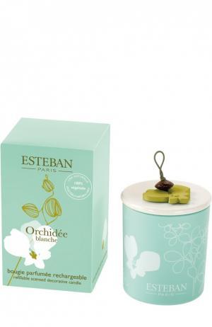 Декоративная арома-свеча 170 г Белая орхидея Esteban. Цвет: бесцветный