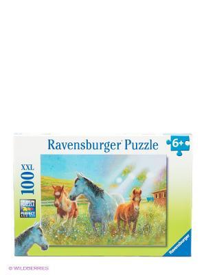 Пазл Лошади в лучах солнца Ravensburger. Цвет: зеленый