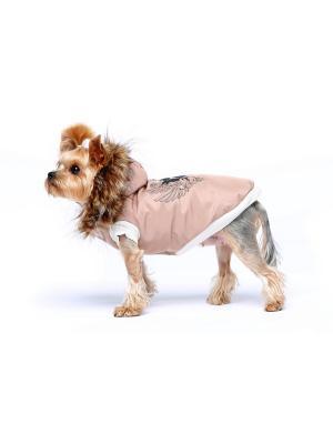 Жилетка для собак Ай Да Пес. Цвет: бежевый