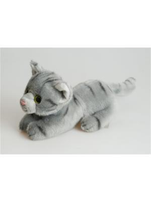 Кот Вилли Fancy. Цвет: серый