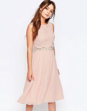 Elise Ryan Короткое приталенное платье с кружевным верхним слоем. Цвет: розовый