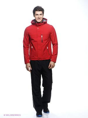Куртка Stayer. Цвет: красный, белый, синий