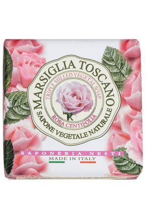 Мыло роза Центифолия Nesti Dante. Цвет: none