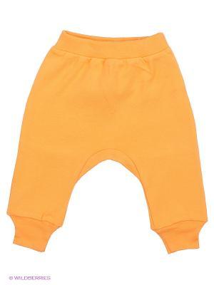 Штанишки с боковым швом Goldy. Цвет: оранжевый