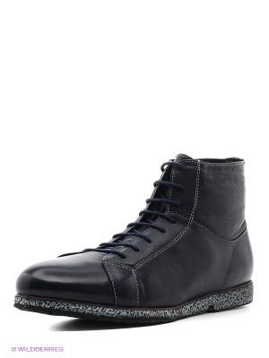 Ботинки Franco Bellucci. Цвет: темно-синий