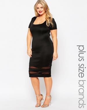 Gemma Collins Платье-футляр с короткими рукавами. Цвет: черный