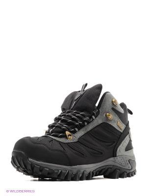 Ботинки EDITEX. Цвет: черный