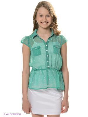 Блузка Bimbus. Цвет: зеленый, белый