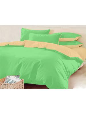 Двуспальное постельное белье. Трикотаж. Хлопковый Край. Цвет: светло-зеленый, бежевый