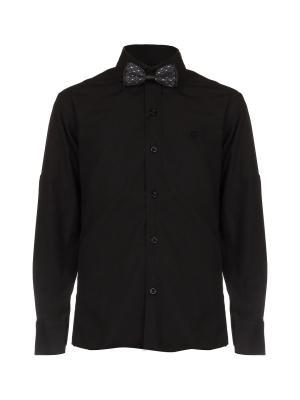 Рубашка ROMA design. Цвет: черный