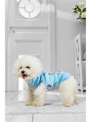 Спортивный жилет Влюбленный Снупи для маленьких пород собак весом 4-8 кг и длиной спинки около 35 см Nothing but Love. Цвет: голубой, белый, черный
