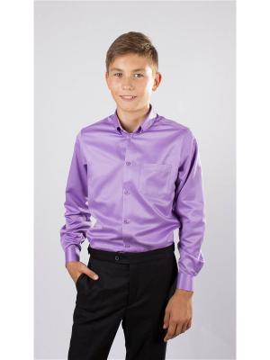 Рубашка OZORNIK. Цвет: темно-фиолетовый