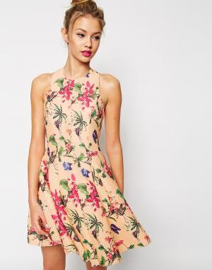 ASOS Короткое приталенное платье с пышной юбкой PREMIUM. Цвет: мульти
