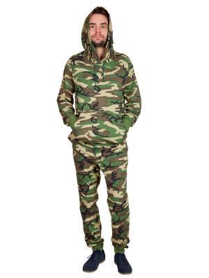 Костюм (кофта,штаны) OLYMP. Цвет: зеленый, бежевый, коричневый