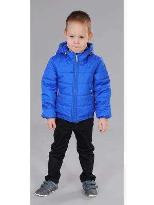 Куртка Милашка Сьюзи. Цвет: синий