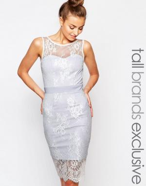 Paper Dolls Tall Кружевное платье-футляр с лямкой через шею. Цвет: мульти
