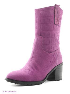 Полусапожки La Gatta. Цвет: фиолетовый