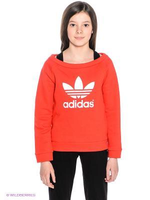 Свитшот Adidas. Цвет: оранжевый