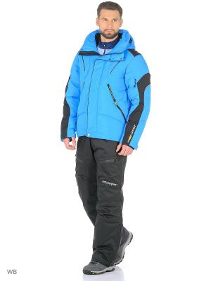 Куртка Stayer. Цвет: черный, синий