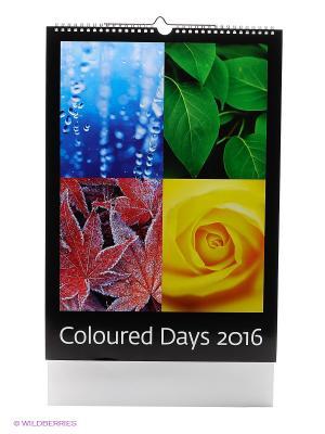 Календарь Coloured Days (Разноцветный мир) КОНТЭНТ. Цвет: белый