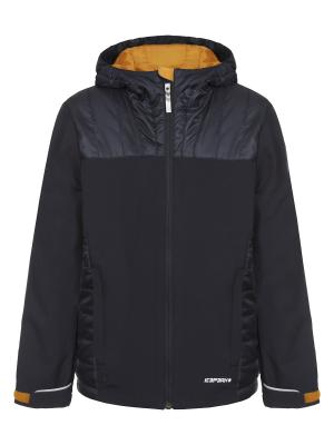 Куртка Icepeak. Цвет: антрацитовый