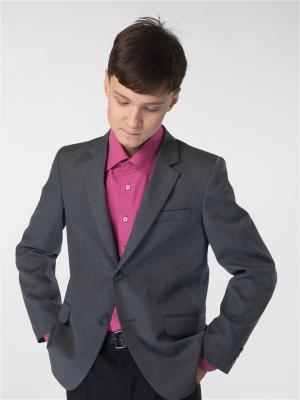 Пиджак Paxton. Цвет: серый