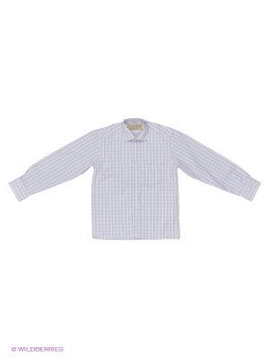 Рубашка Tsarevich. Цвет: белый, синий