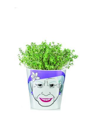 Цветочный горшок Flower Queen Donkey. Цвет: фиолетовый, белый
