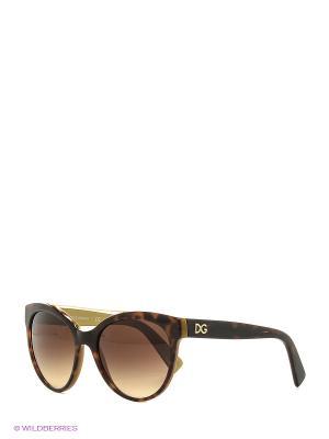 Очки солнцезащитные 0DG4280-295613 DOLCE & GABBANA. Цвет: коричневый