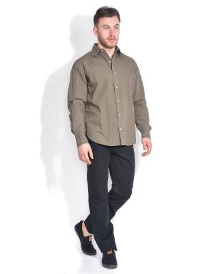 Рубашка VON DUTCH. Цвет: коричневый