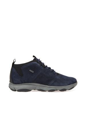 Ботинки GEOX. Цвет: темно-синий