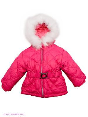 Куртка Baby Club. Цвет: фуксия