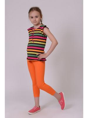 Леггинсы EMDI. Цвет: оранжевый