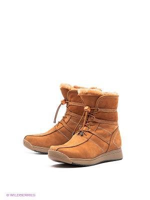 Ботинки EVITA. Цвет: рыжий