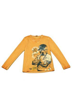 Джемпер Dodipetto. Цвет: оранжевый