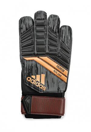 Перчатки вратарские adidas. Цвет: черный
