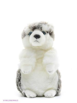 Мягкая игрушка Хаски MAXITOYS. Цвет: серый, белый