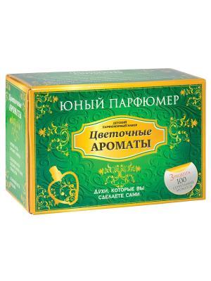 Набор Юный Парфюмер Цветочные ароматы Master IQ2. Цвет: зеленый