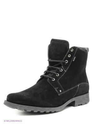 Ботинки BELWEST. Цвет: черный