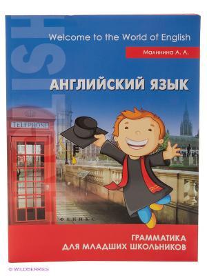 Английский язык: грамматика для младших школьников Феникс-Премьер. Цвет: синий, красный