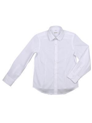 Рубашка Cleverly. Цвет: белый