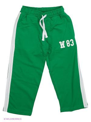 Спортивные брюки WonderKids. Цвет: зеленый