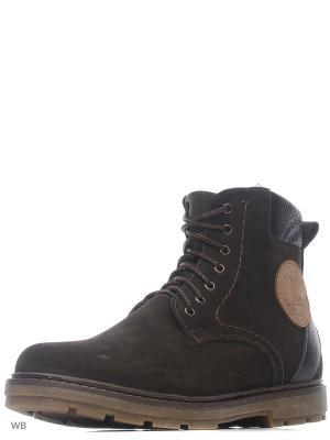 Ботинки ZET. Цвет: темно-коричневый