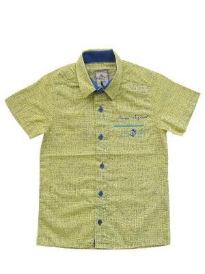 Рубашка CEGISA. Цвет: желтый